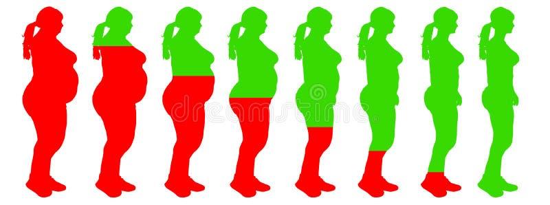 Vet aan slank van de het verliestransformatie van het vrouwengewicht de gezondheidsrisico vector illustratie