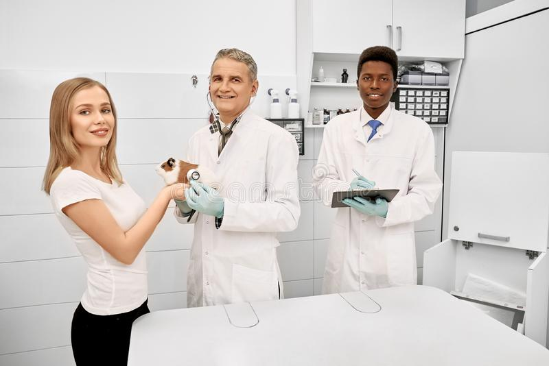 Vet, assistant and owner of hamster posing in clinic. stock photos