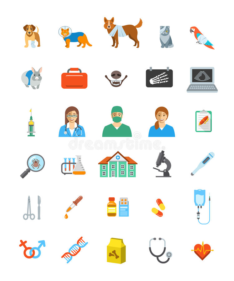 Vet clinic services vector icons. Pet treatment flat symbols. Domestic animals health care concepts. Bandaged dog, sick cat, ill puppy, kitten, parrot and stock illustration