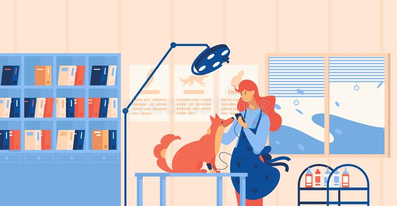 Vet doctor and dog in veterinary clinic cabinet testing blood pressure of pet. Interior concept scene drawn in flat style in royalty free illustration
