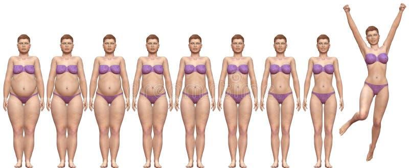 Vet Geschikt voordien na de Vrouw van het Succes van het Gewicht van het Dieet royalty-vrije illustratie