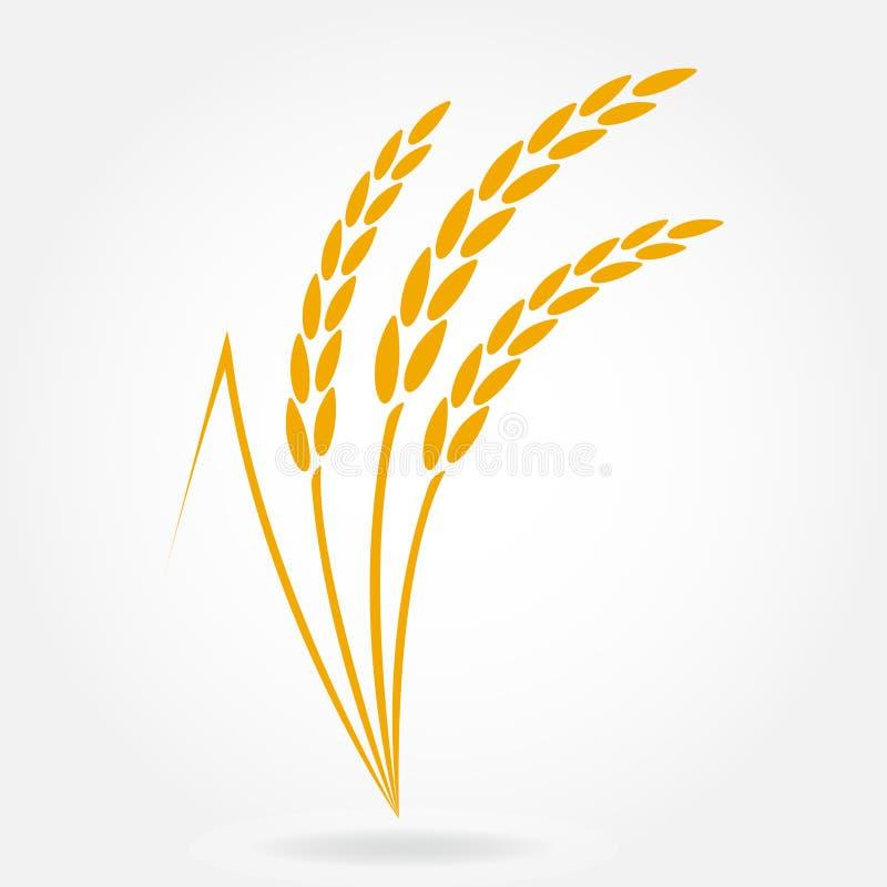Veteöra- eller rissymbol Designbeståndsdelar för att förpacka för bröd eller öletikett Jordbruks- vete- och rissymbol Vektor Illu stock illustrationer