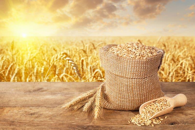 Veteöron och korn på tabellen arkivbild