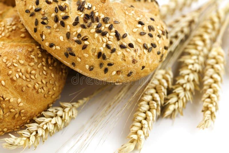 Vete och bröd royaltyfria bilder