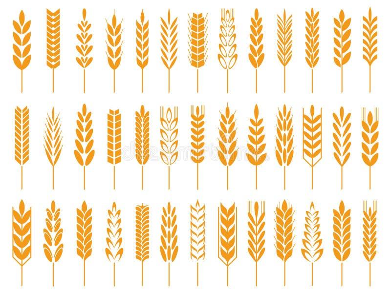 Vetekornsymboler Wheatsbrödlogo, lantgårdkorn och symbol för vektor för rågstjälk symbol isolerad stock illustrationer