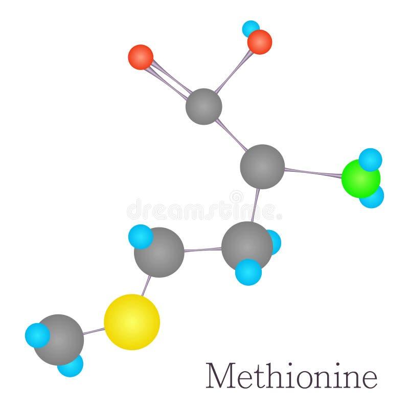 Vetenskap för molekyl för Methionine 3D kemisk royaltyfri illustrationer