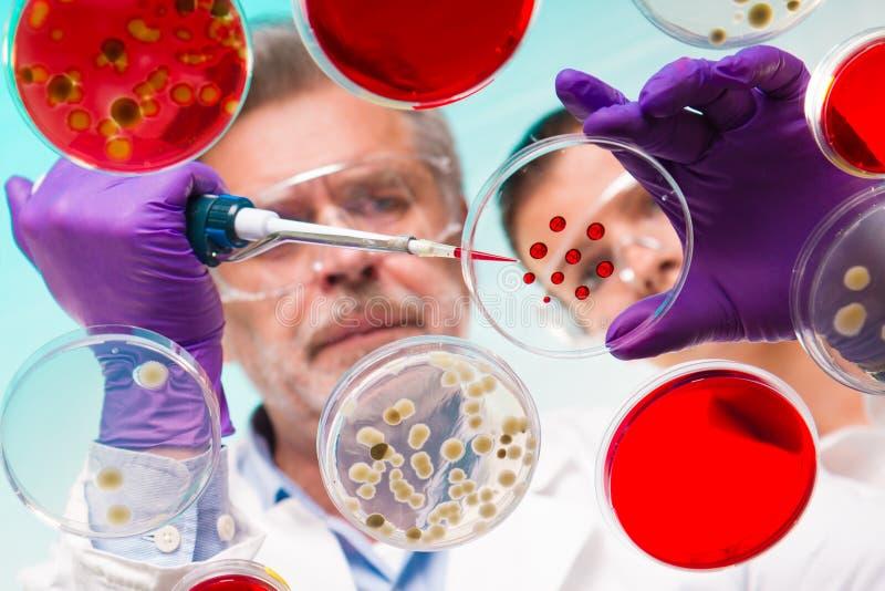Vetenskaperna om olika organismers beskaffenhet royaltyfri bild
