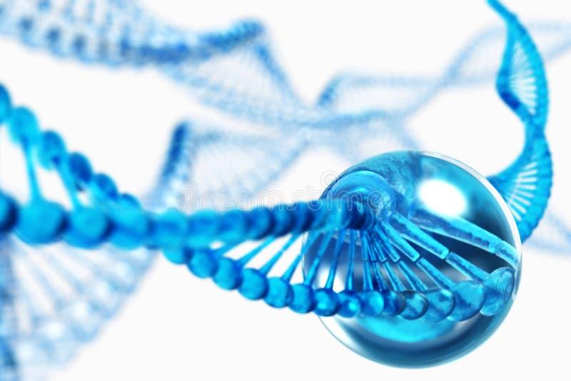 Vetenskapligt begrepp för genteknik kromosom royaltyfri illustrationer
