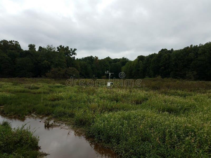 Vetenskapligt instrument för väderstation i våtmarkmiljö arkivfoton