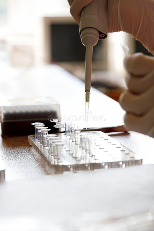 vetenskapligt laboratorium arkivfoton