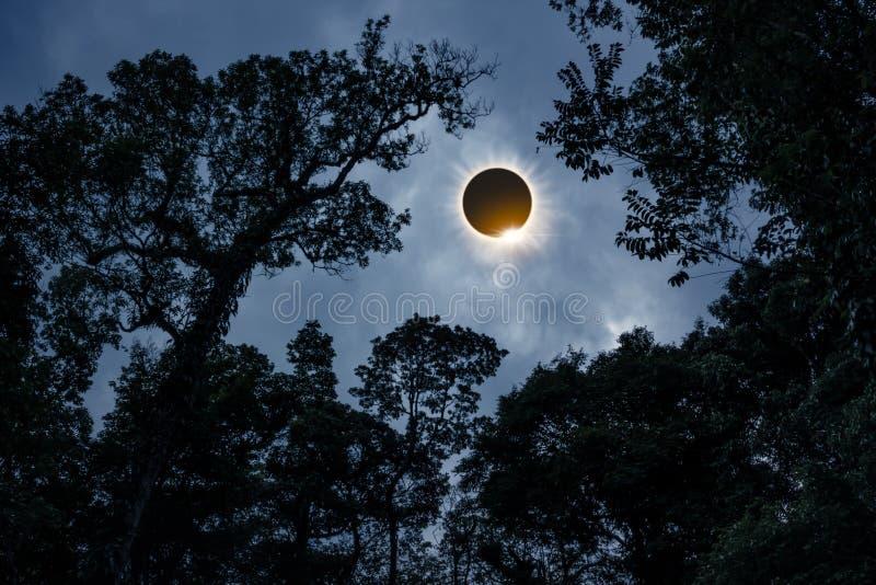 Vetenskapligt naturligt fenomen Sammanlagd sol- förmörkelse med diamanten arkivbilder