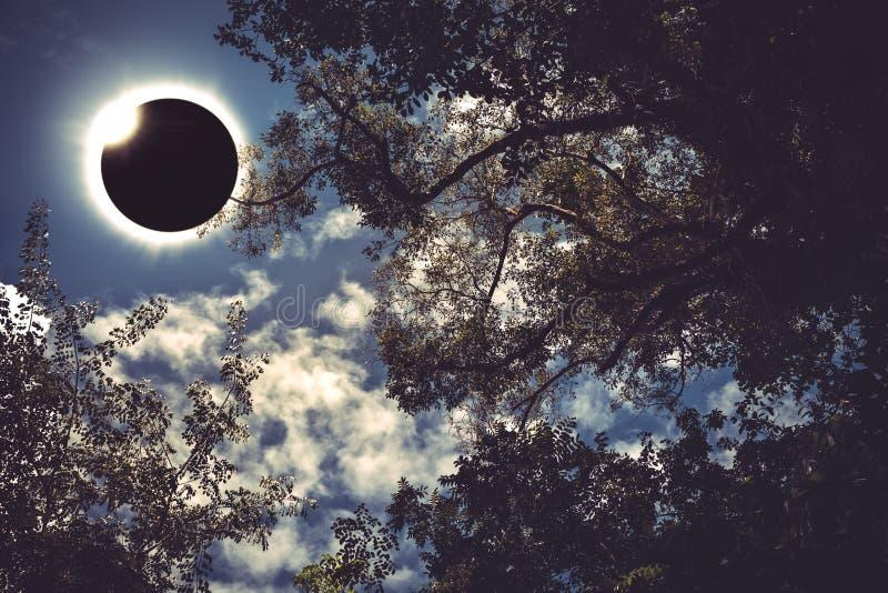 Vetenskapligt naturligt fenomen Sammanlagd sol- förmörkelse med diamanten arkivfoto