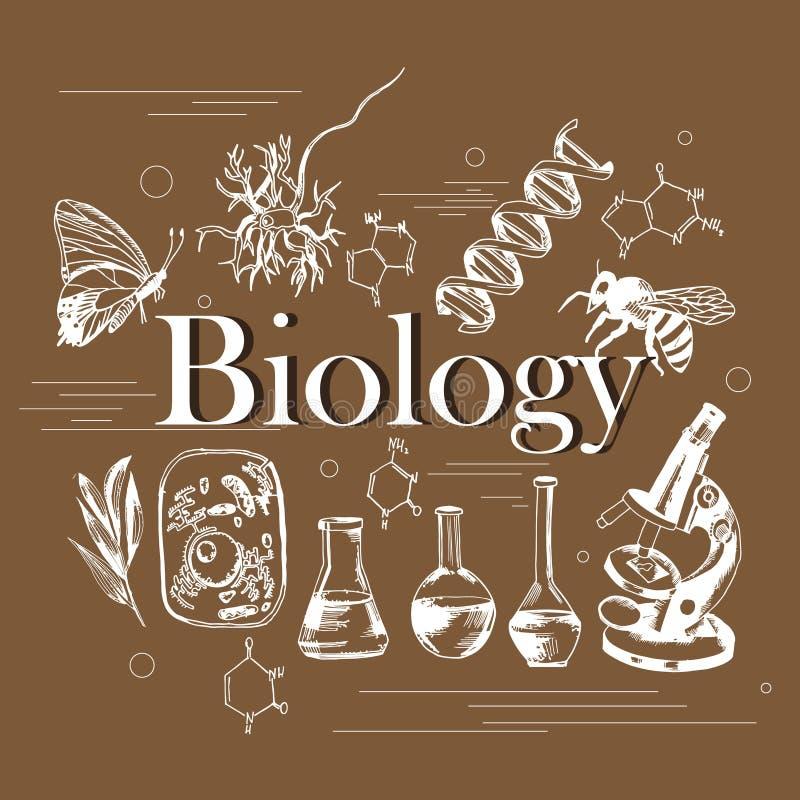 Vetenskapsbegrepp av biologin med hand drog beståndsdelar stock illustrationer