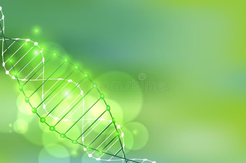 Vetenskapsmall, grön tapet eller baner med DNAmolekylar royaltyfri illustrationer