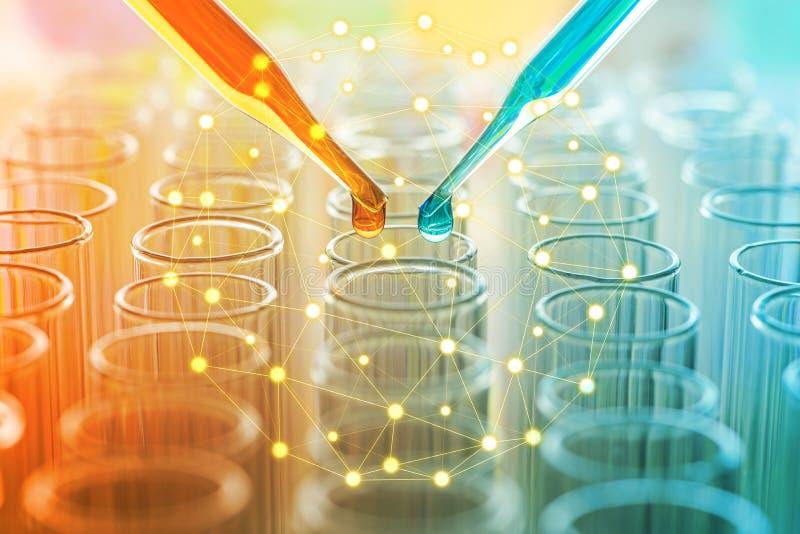 Vetenskapspipett med en droppe av vikten över laboratoriumprovet tu arkivfoton