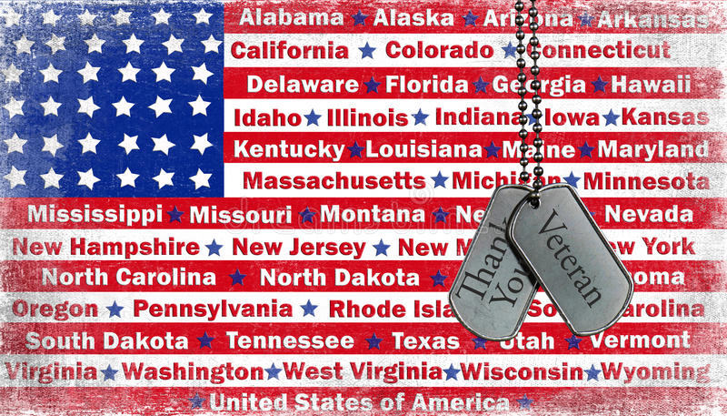 Veteran's Day. Veteran tribute on military dog tags on flag vector illustration