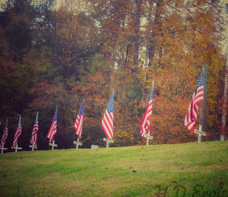 Veteran's day thank royalty free stock image