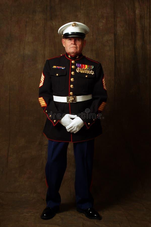 Veterano marina fotos de archivo libres de regalías
