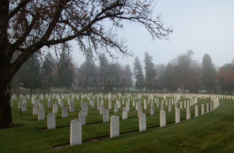 Veterans& x27;公墓墓石在一个有雾的早晨 库存图片