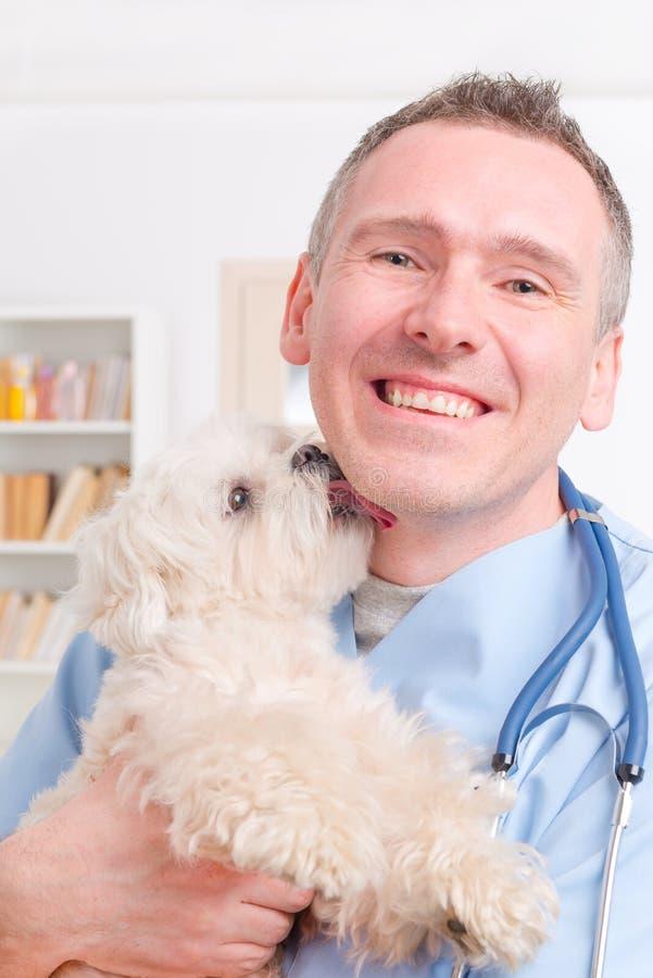 Veterinário feliz que guarda um cão pequeno imagens de stock