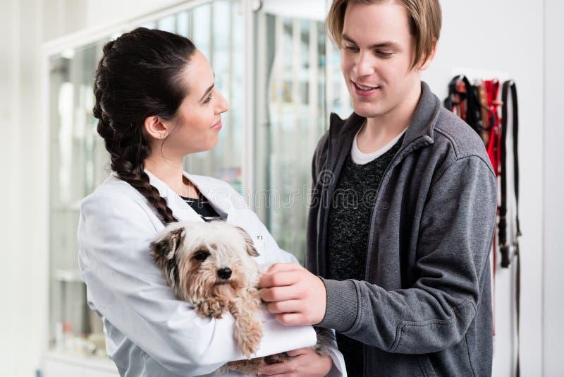 Veterinário feliz que leva o cachorrinho doente fotos de stock royalty free