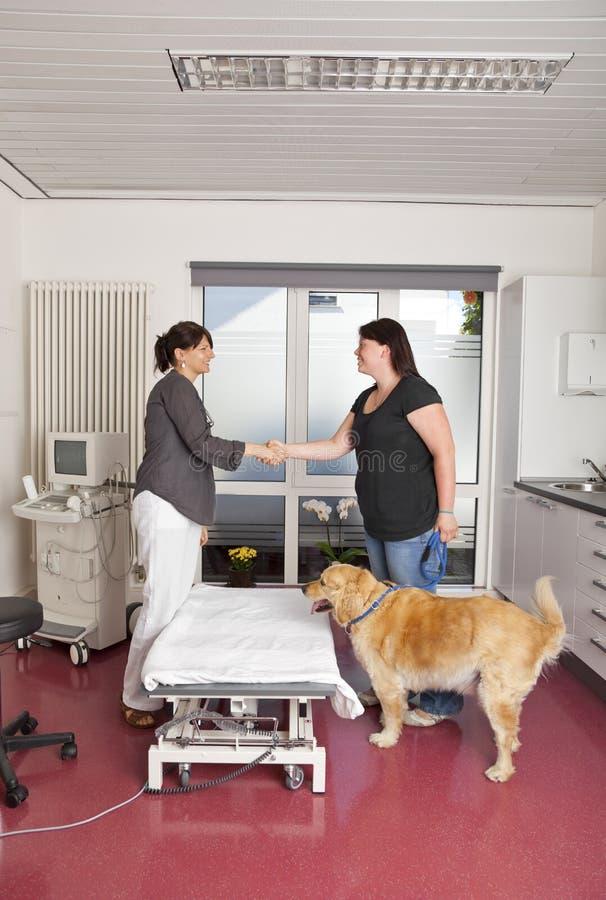 Veterinário que agita as mãos com onwer do cão foto de stock