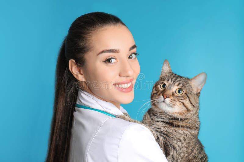 Veterinär doc med katten royaltyfri bild
