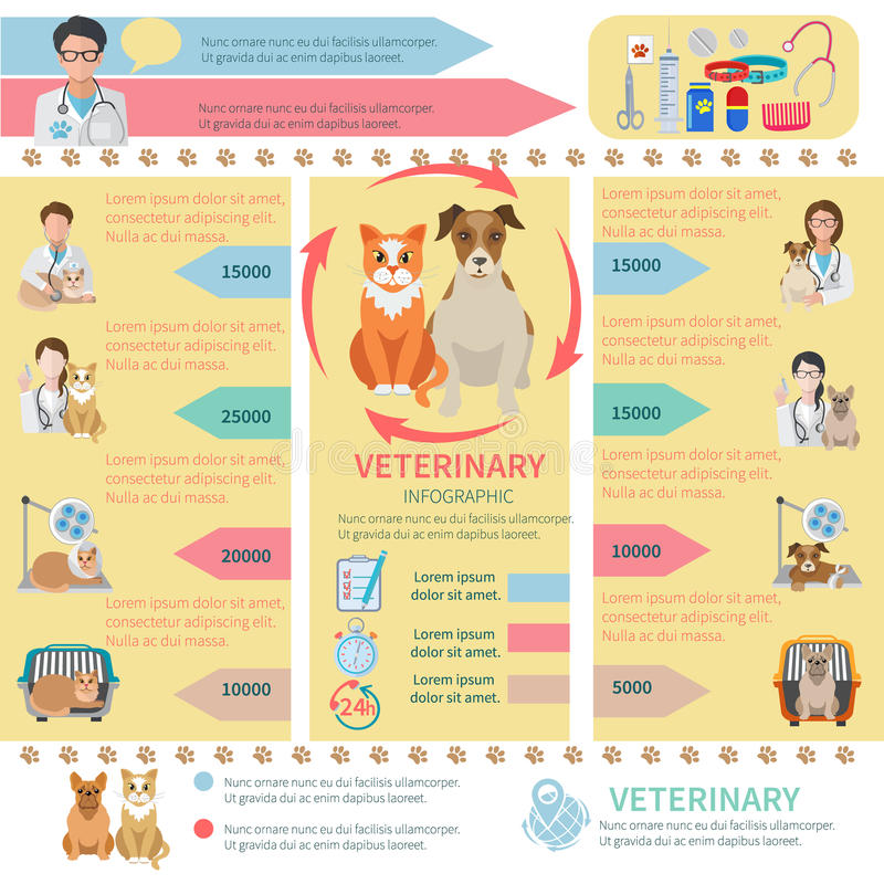 Veterinär-Infographics lizenzfreie abbildung