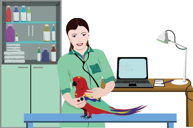 Veterinär- klinikläkarundersökningmall stock illustrationer