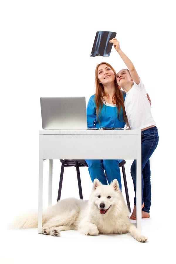 Veterinär med hunden, på tabellen i veterinärklinik, djurt doktorsbegrepp royaltyfri fotografi