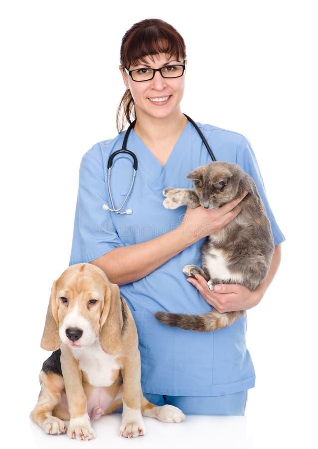 Veterinär med katten och hunden bakgrund isolerad white arkivfoto
