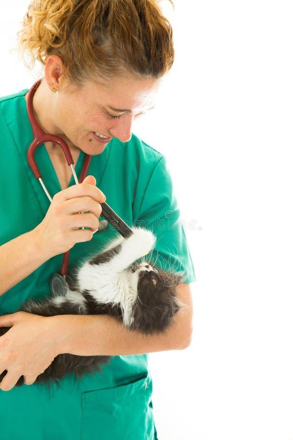 Veterinär- med kattungen fotografering för bildbyråer