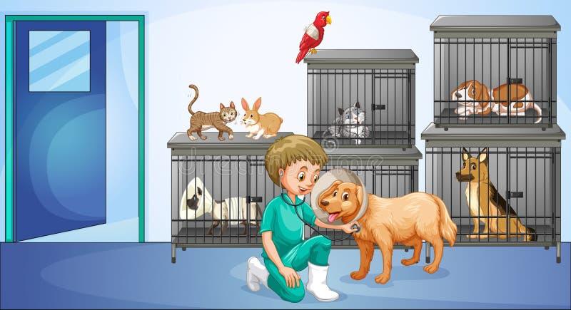 Veterinär och många djur i buren royaltyfri illustrationer