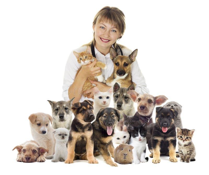 Veterinär och uppsättning av husdjur royaltyfri foto