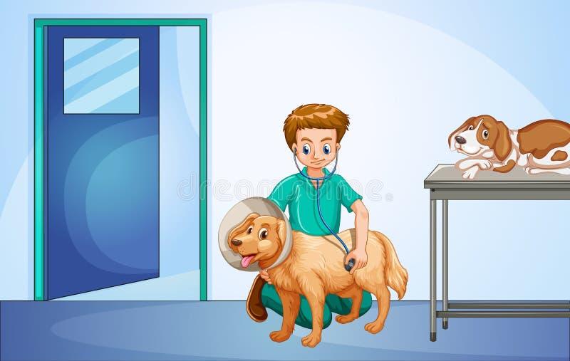Veterinär som läker hunden på sjukhuset stock illustrationer