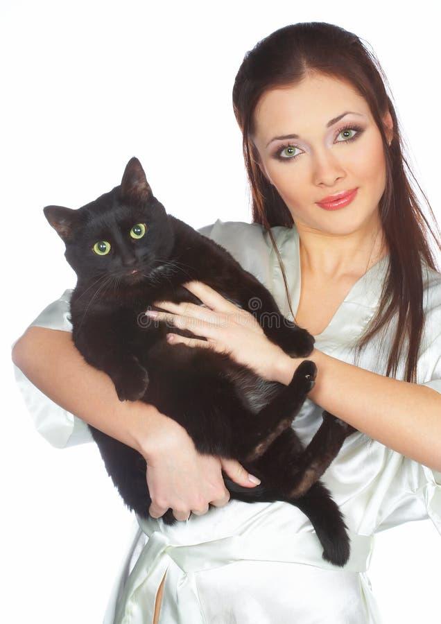 veterinär- svart katt arkivfoton