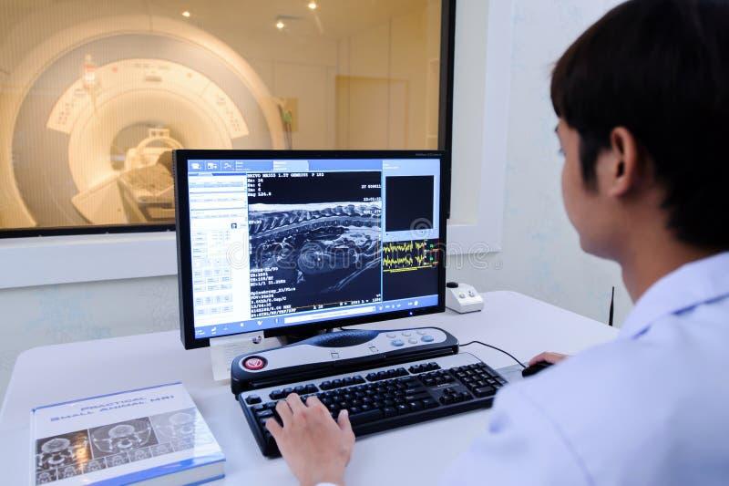 Veterinaire arts die in MRI-ruimte werken stock fotografie
