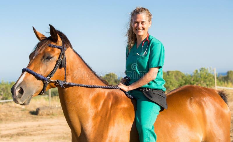 Veterinaire paarden op het landbouwbedrijf royalty-vrije stock fotografie