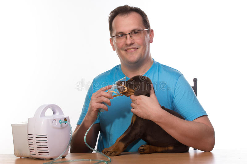 Veterinar和小狗与吸入器有吸入器的 图库摄影