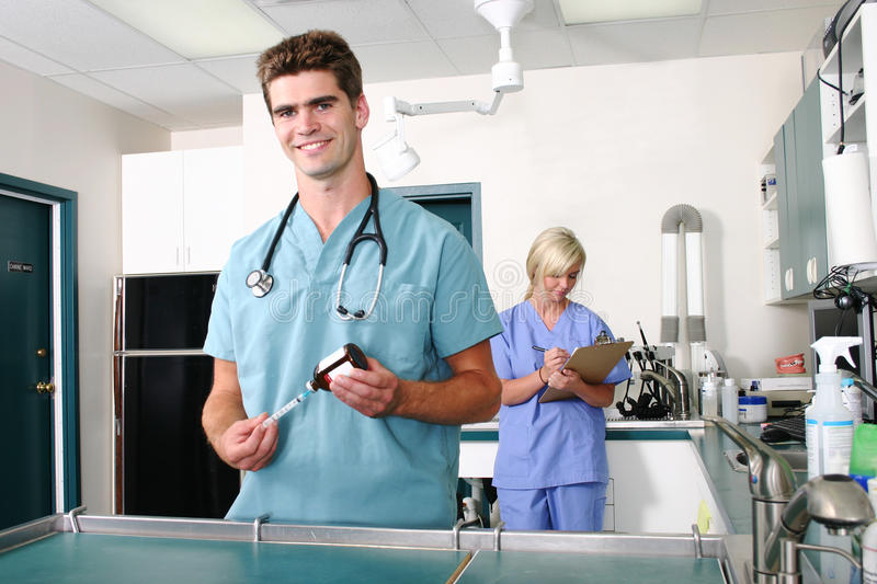 Veterinarian And Assistant Preparing For Surgery Royalty Free Stock Photography