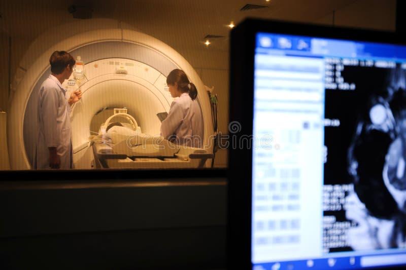 Veterinarian doctor working in MRI scanner room stock photo