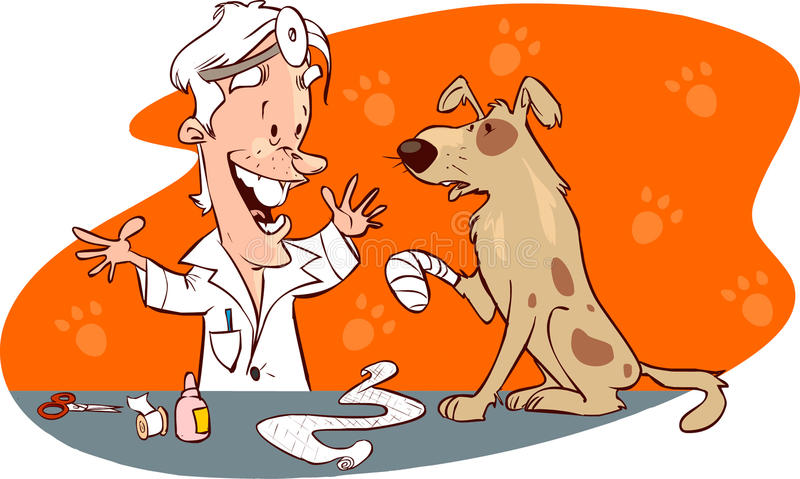 Veterinarian and dog stock illustration