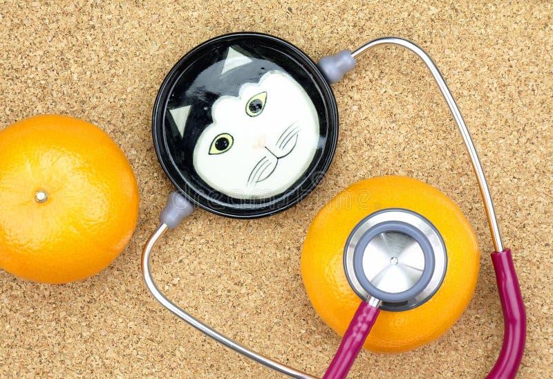 Veterinarian examining orange with a stethoscope, Cat Doctor. Veterinarian examining orange with a stethoscope, Cat Doctor, Healthy food stock images