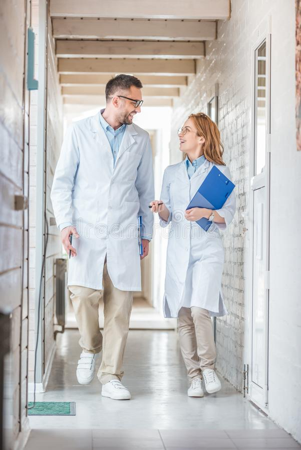 veterinarians in white coats walking with clipboards in veterinary clinic and looking at each stock photos