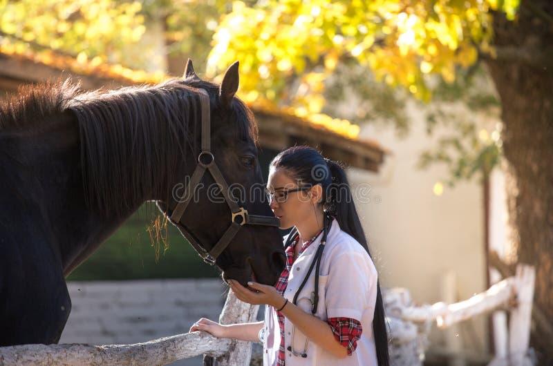 Veterinario con el caballo en granja foto de archivo