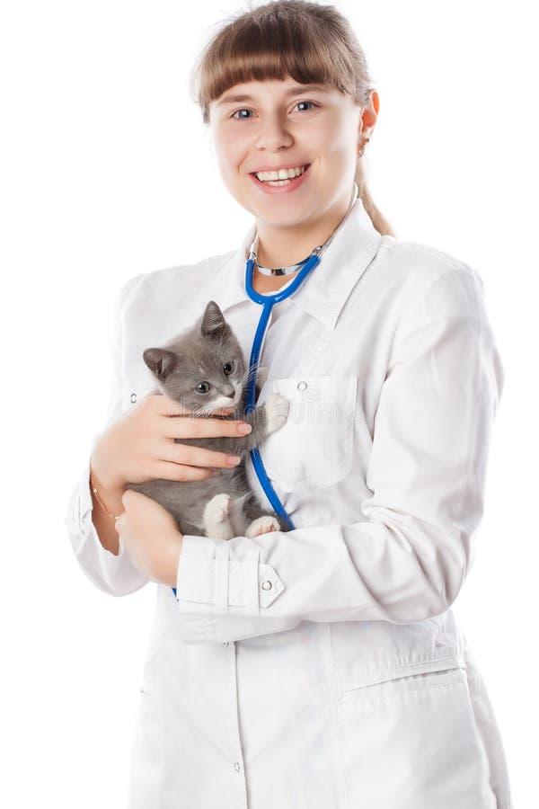 Veterinario con lo stetoscopio ed il gattino immagine stock