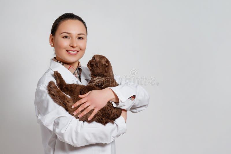 Veterinario de la chica joven en ropa de funcionamiento con un gato divertido en sus brazos en fondo ligero foto de archivo libre de regalías