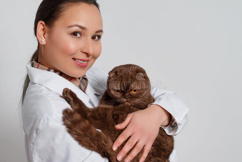 Veterinario de la chica joven en ropa de funcionamiento con un gato divertido en sus brazos en fondo ligero imagen de archivo libre de regalías