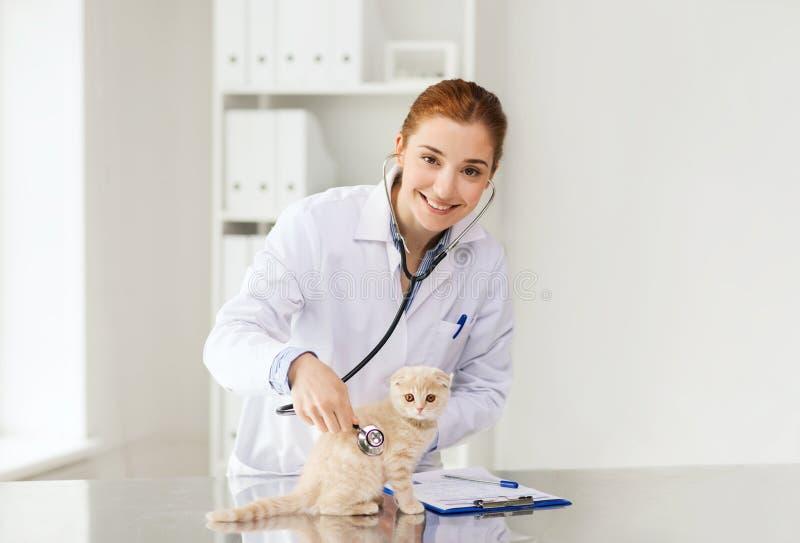 Veterinario feliz con el gatito en la clínica del veterinario imagen de archivo