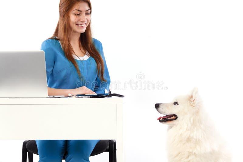 Veterinario sorridente con il computer ed il cane, nella clinica del veterinario Medico dell'animale domestico o dell'animale Con fotografia stock libera da diritti